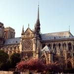 Notre-Dame - Floriane Caux